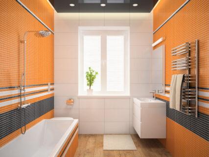 Creative Bathroom interior design project